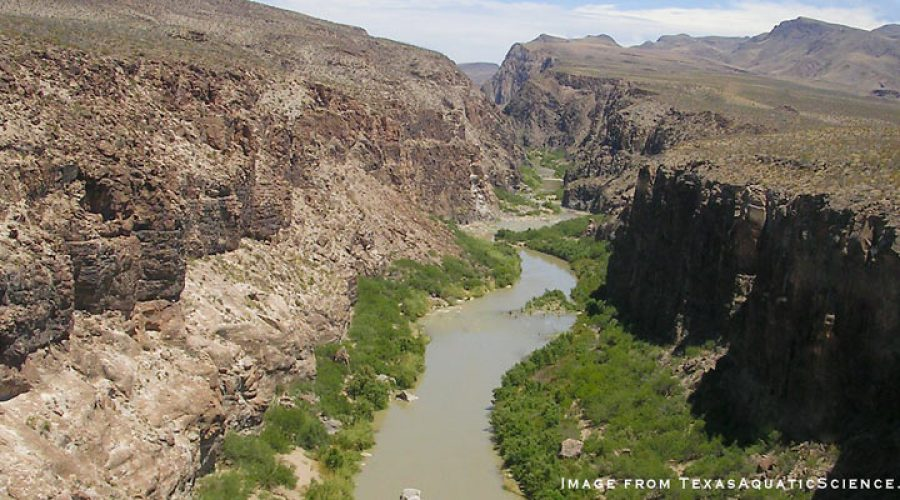 Evolution of Interbasin Surface Water Transfer Policy in Texas